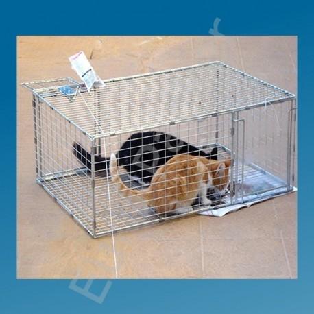 Katten vangkooi